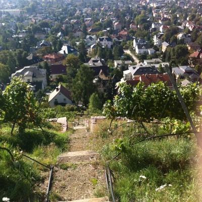 Blick von treppe ins Tal