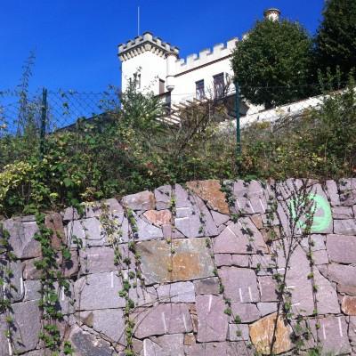 Friedensburg mit Mauer